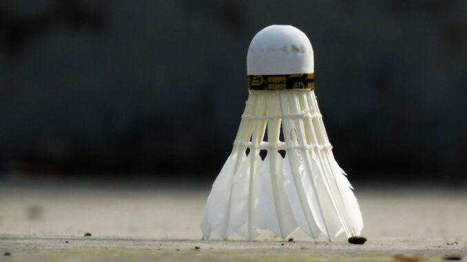 badminton til haven
